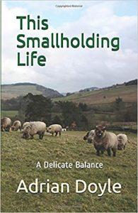 this smallholding life